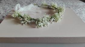 corona flores paniculata