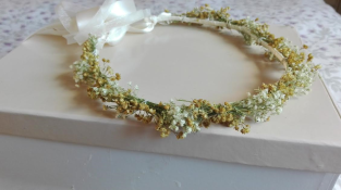 corona paniculata y secas ocre